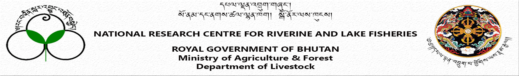 National Research Centre For Riverine And Lake Fisheries